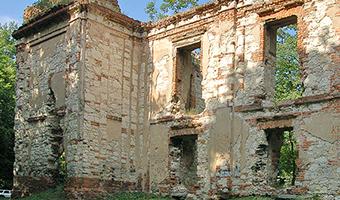 Ruiny Zamku w Bychawie